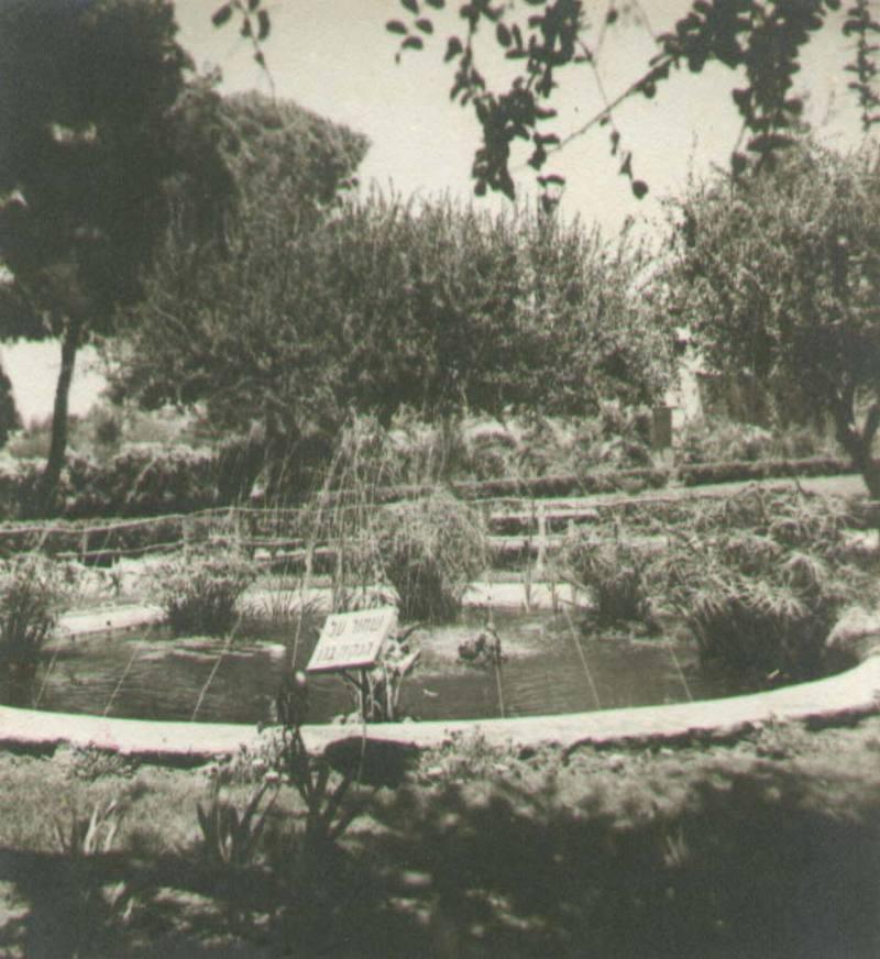 gallery-back-yard-fountain-old.jpg