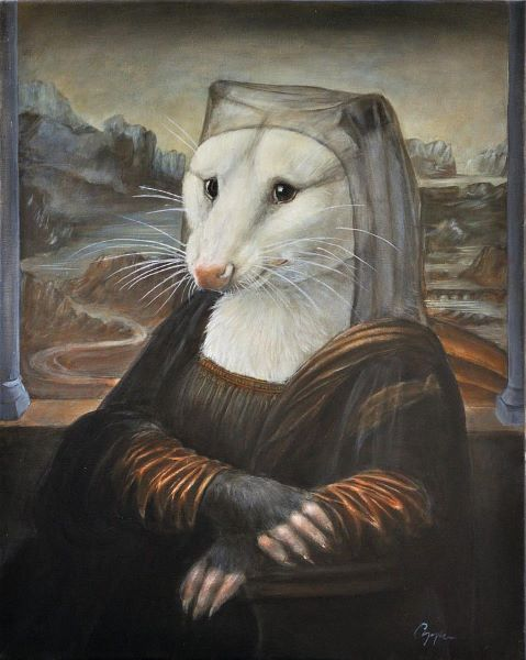 possum Lisa.jpg