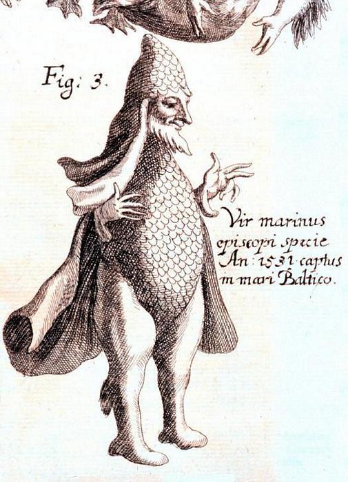 Virmarinus.jpg